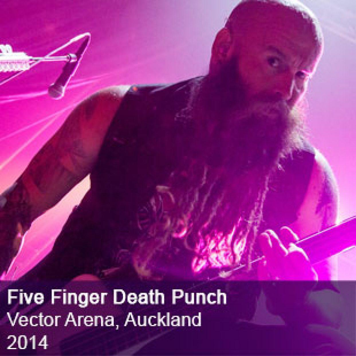 Five Finger Death Punch live