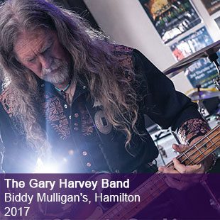 Gary Harvey Band Live 2017